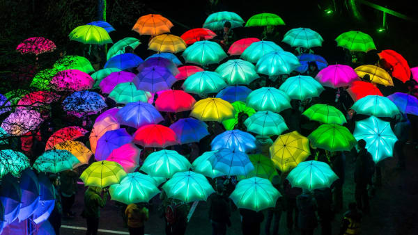Cirque Bijou Umbrella Project which is part of Light Night Worcester 2019